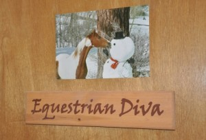 Equestrian Diva's Office at Palatine Stables