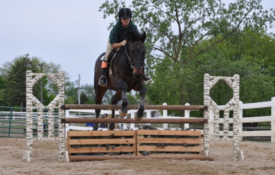 Group Riding Lessons at Palatine Stables
