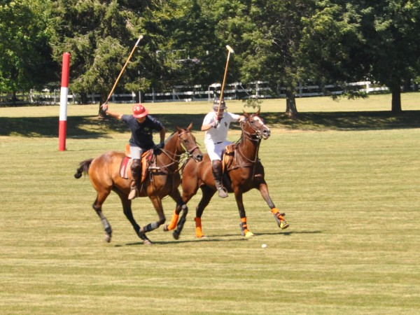 Playing Polo in Barrington, Illinois