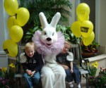 Easter Bunny Trail in Barrington, Illinois