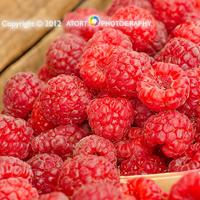 BOB - Farmers Market Raspberries