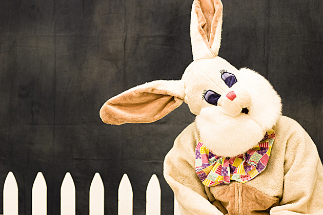Post - Easter Bunny at Deer Park Town Center