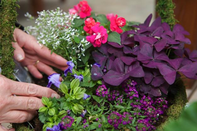 Goebbert's Artfully Arranged Flower Baskets - Photograph by Julie Linnekin