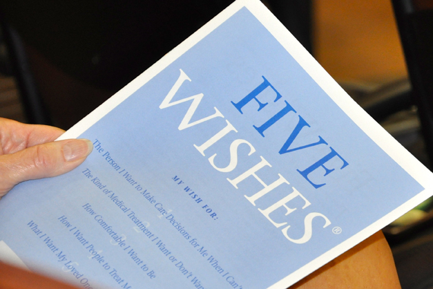 5 wishes vision