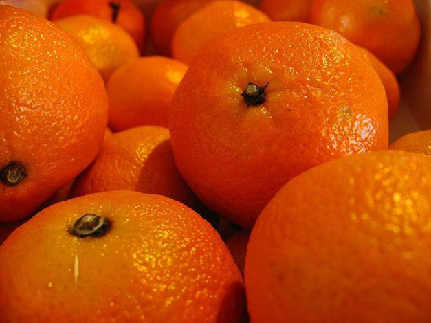 "Clementines are December's ""Tasty Tuesday"" ingredient of the month"