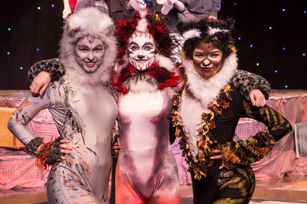 Cats Performance at Barrington High School - Photographed by Sally Roeckell