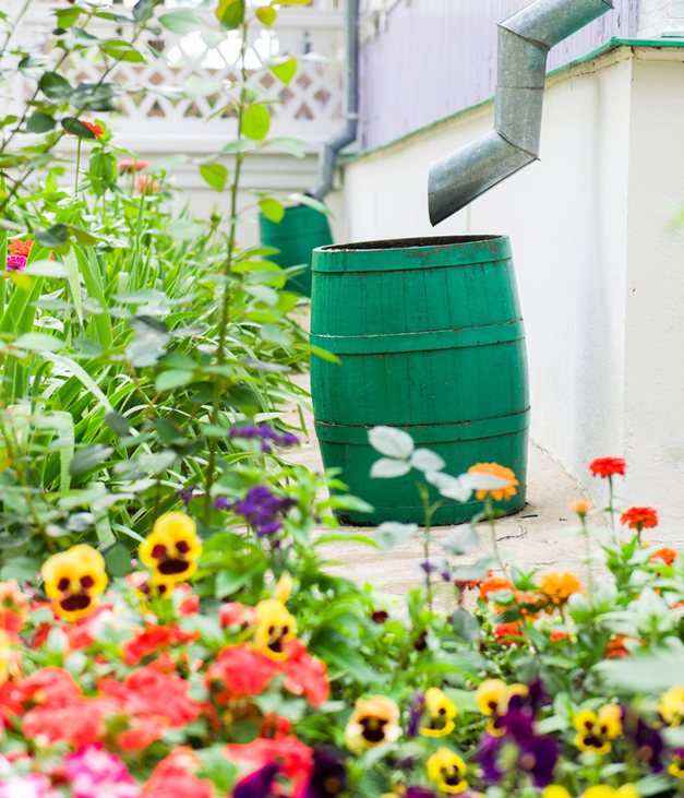 Capture Stormwater with Rain Barrels