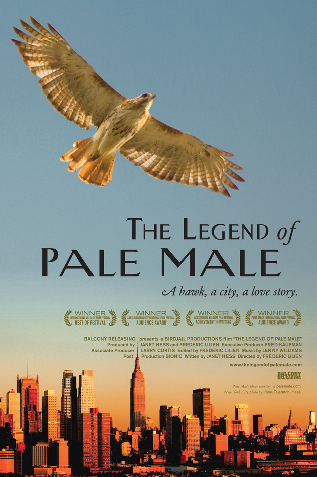 The Legend of Pale Male Film Poster