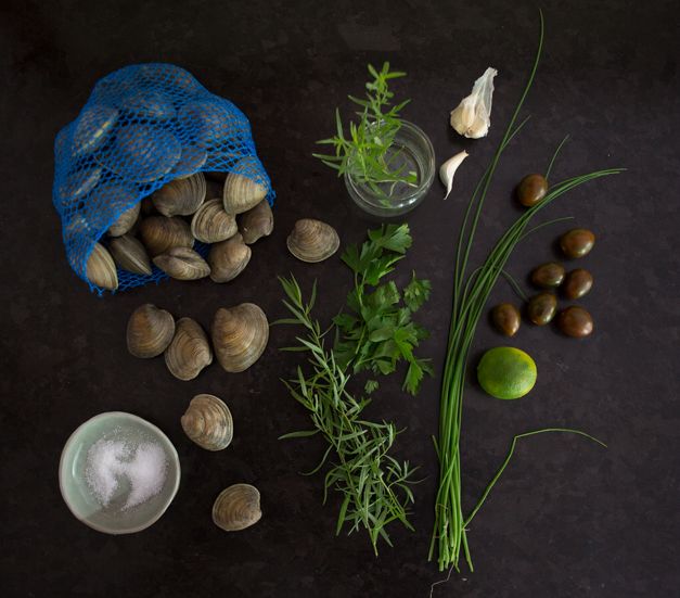 Clams_steamed_with_tarragon_Tableanddish-6246