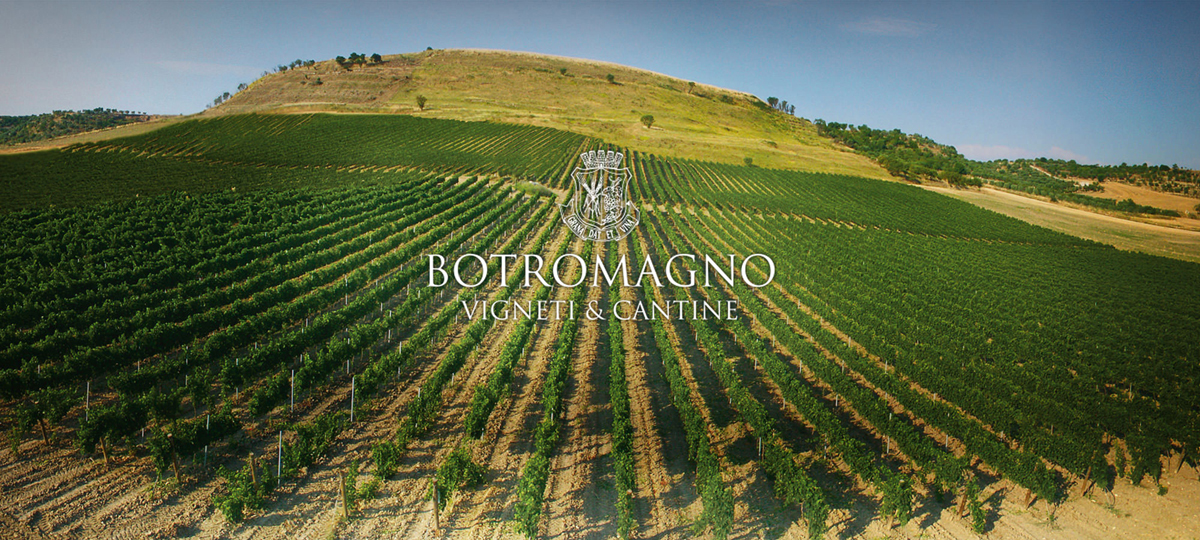 Post 1200 - Botromagno Wines