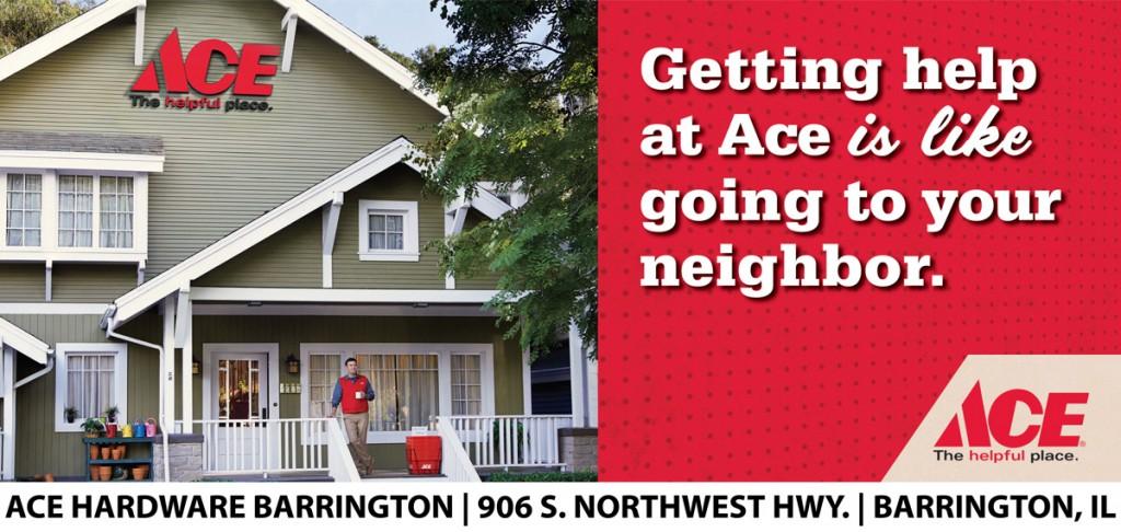 Ace - Neighbor- 1